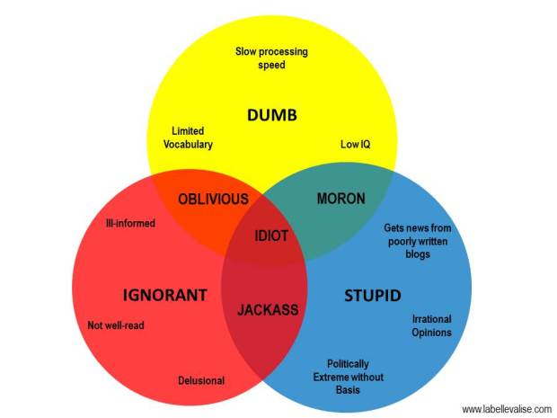 Idiot Venn Diagram