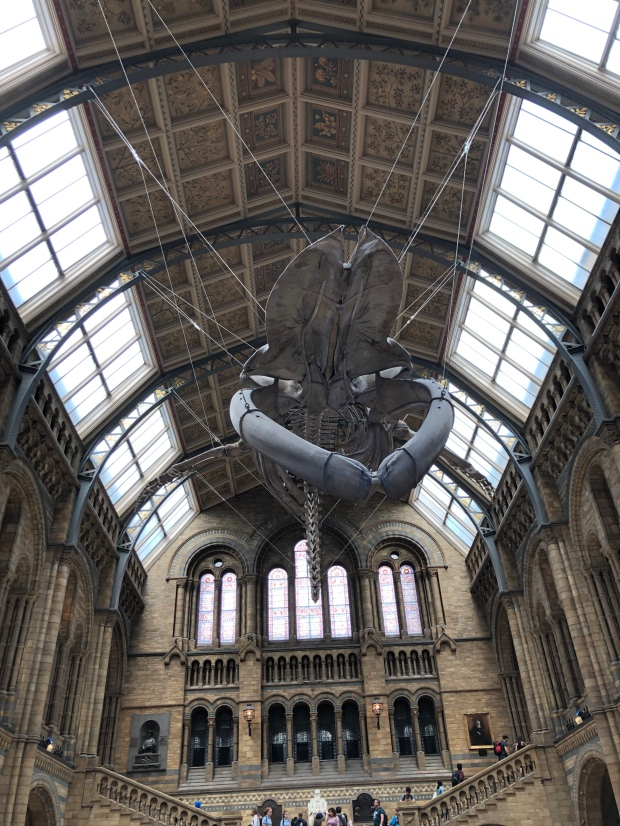 The British Natural History Museum